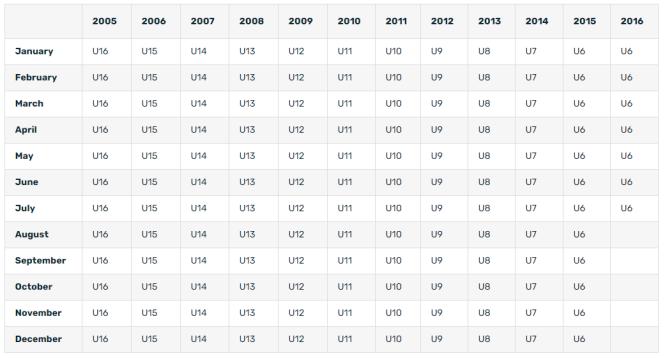 LAVic Age Group Calculator 2020-2021